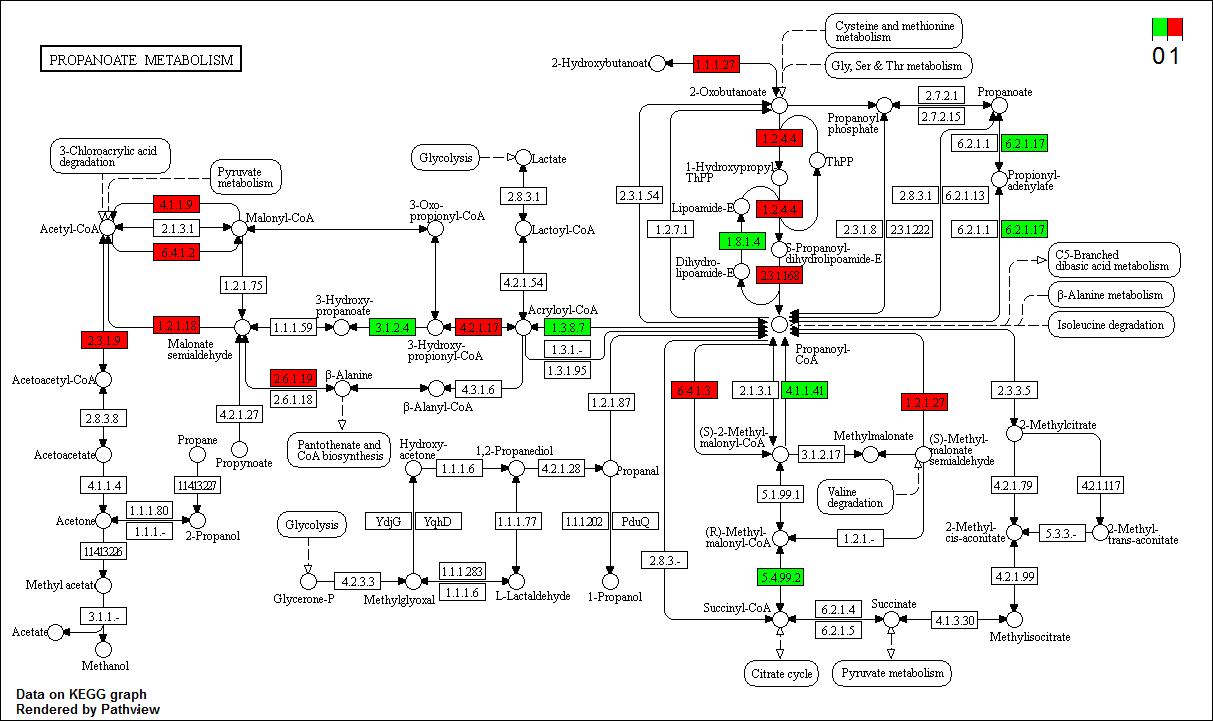 hsa00640.test.genes